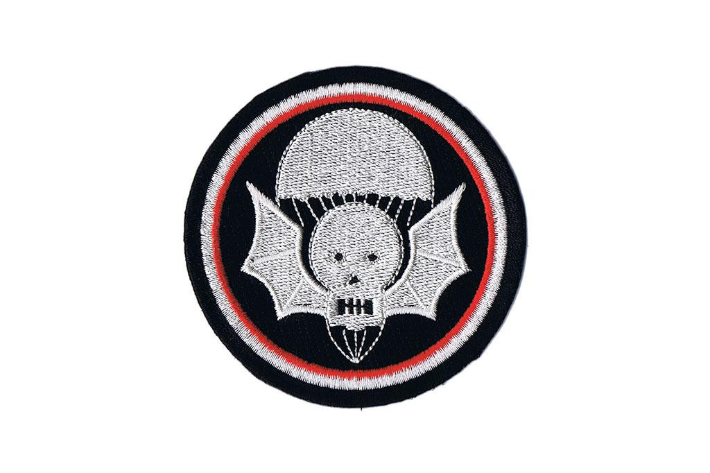 Patch, 502nd PIR (Widowmakers)